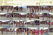 Cool Day At The Beach 3 - naturists movie